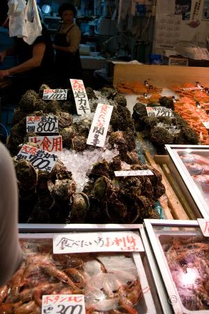 20080506oumichoichiba